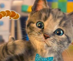 Hack Kitten Simulator on Coins