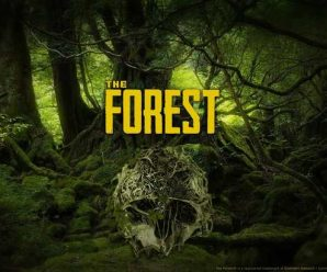 Hack The Forest for money